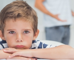 Caretakers and Adoptive Guardians Can Ask for Custody and Visitation Rights